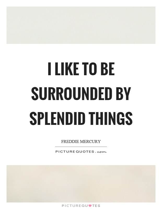 I like to be surrounded by splendid things Picture Quote #1