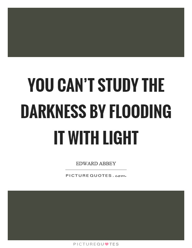 You can't study the darkness by flooding it with light Picture Quote #1