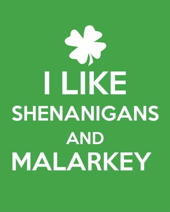 I like shenanigans and malarkey Picture Quote #1