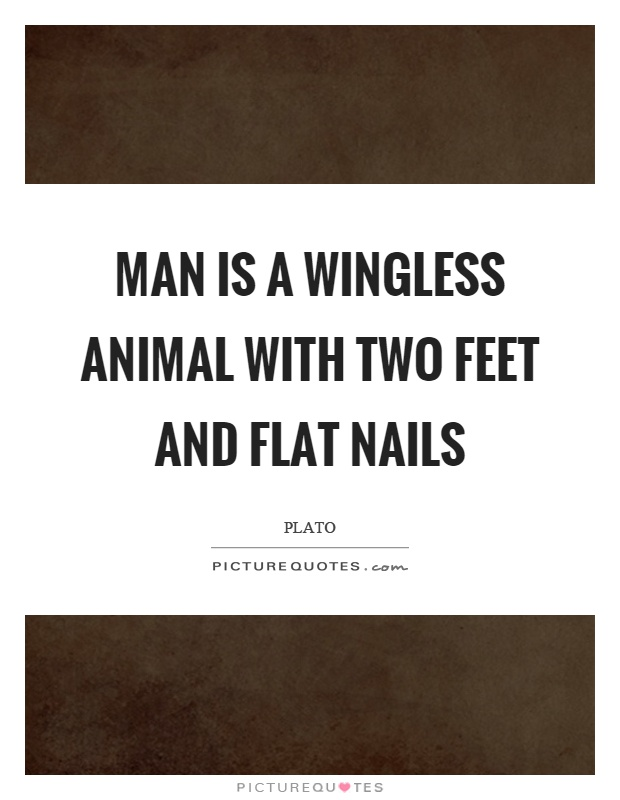 Man is a wingless animal with two feet and flat nails Picture Quote #1