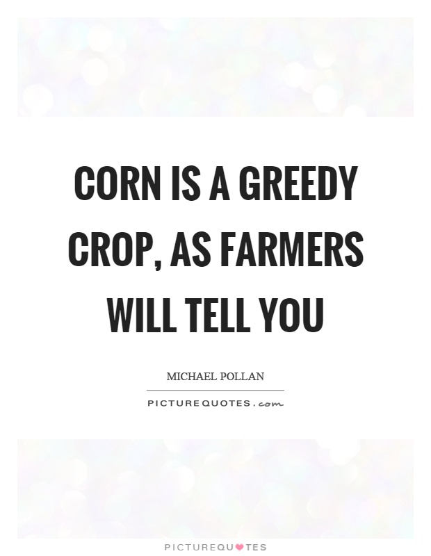 Corn is a greedy crop, as farmers will tell you Picture Quote #1