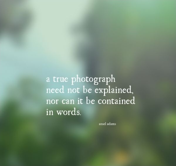 A true photograph need not be explained, nor can it be contained in words Picture Quote #2