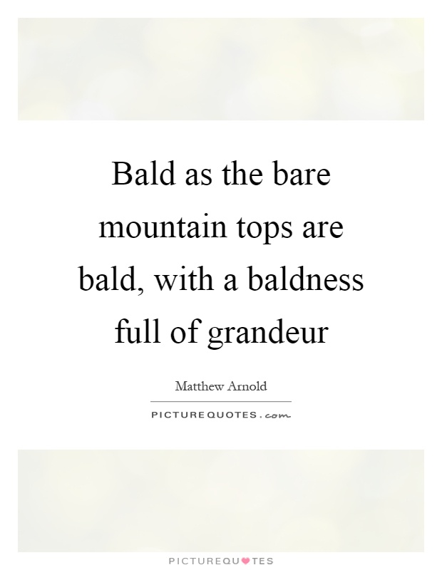 Bald as the bare mountain tops are bald, with a baldness full of grandeur Picture Quote #1