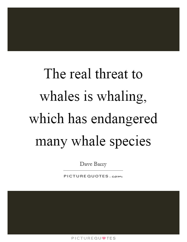 The real threat to whales is whaling, which has endangered many whale species Picture Quote #1