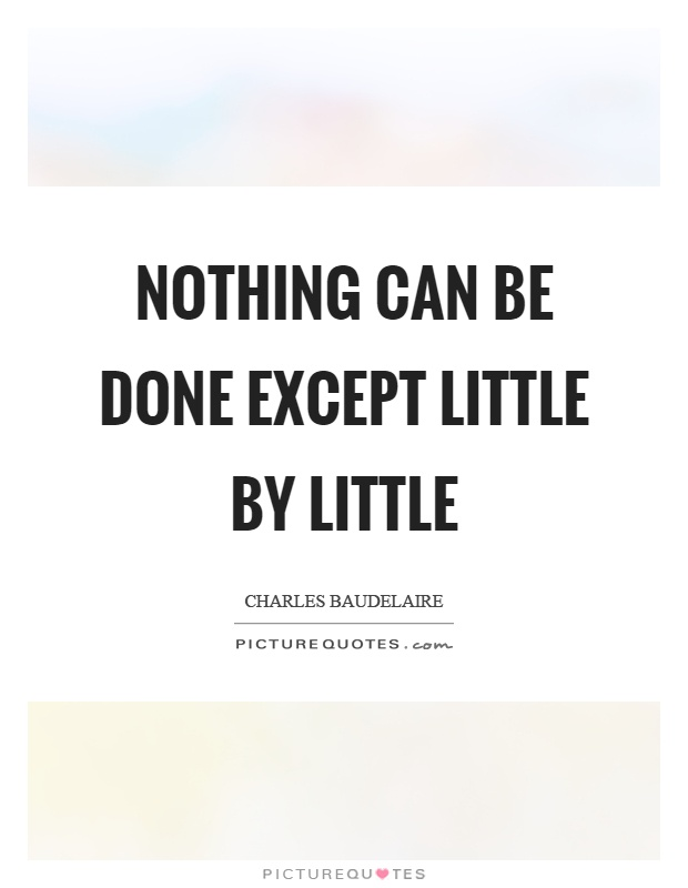 Nothing can be done except little by little Picture Quote #1