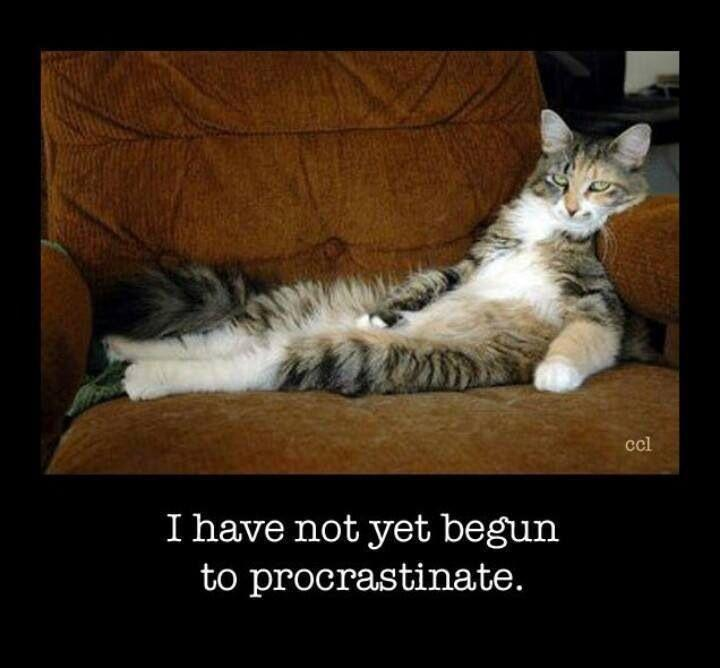 Image result for i have not yet begun to procrastinate