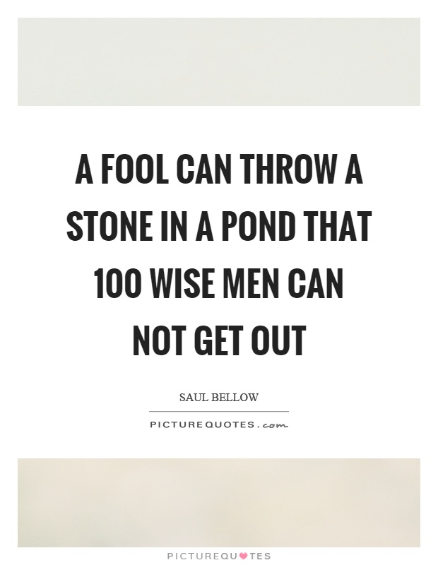 A fool can throw a stone in a pond that 100 wise men can not get out Picture Quote #1