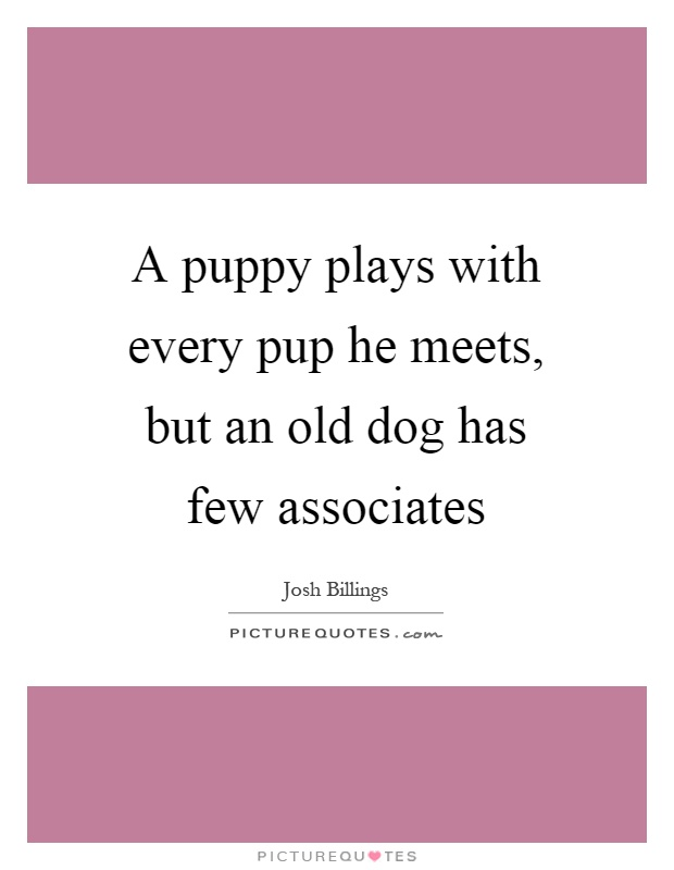 A puppy plays with every pup he meets, but an old dog has few associates Picture Quote #1