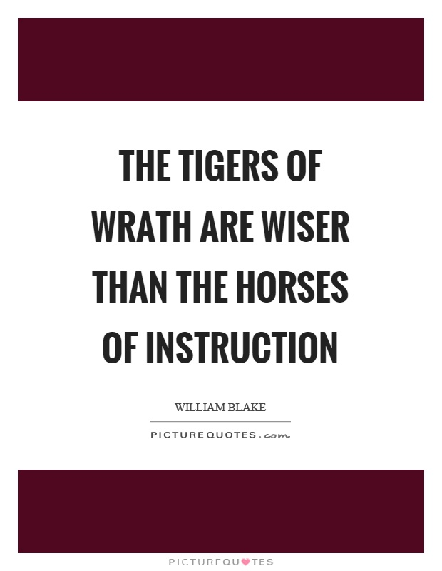 The tigers of wrath are wiser than the horses of instruction Picture Quote #1