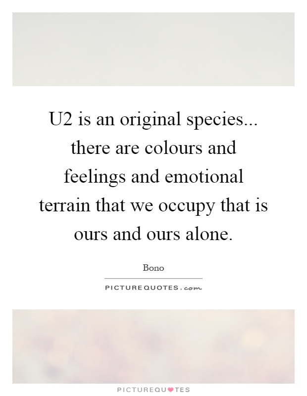 U2 is an original species... there are colours and feelings and emotional terrain that we occupy that is ours and ours alone Picture Quote #1