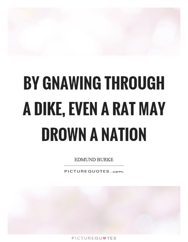 By gnawing through a dike, even a rat may drown a nation Picture Quote #1