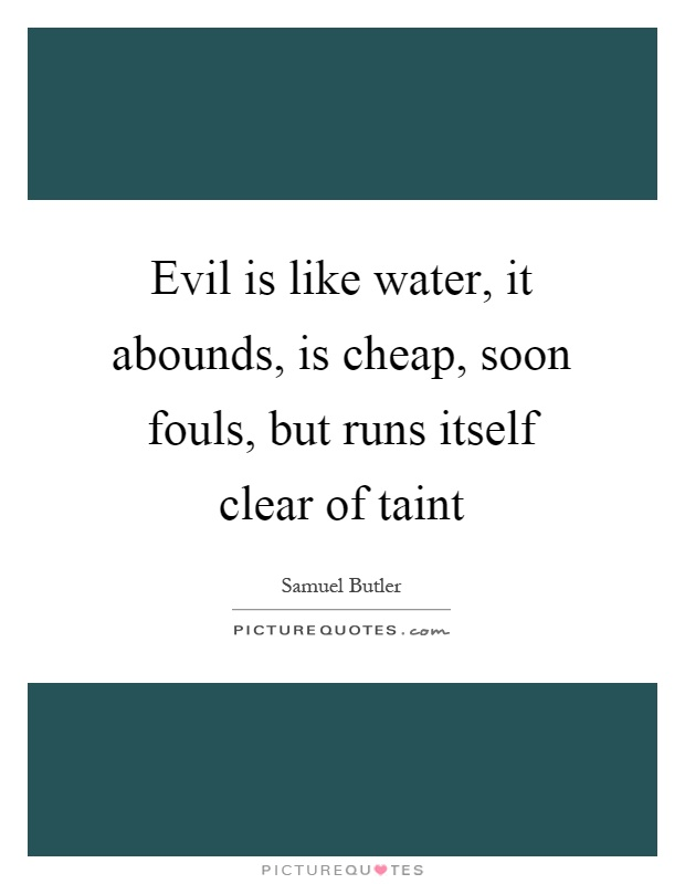 Evil is like water, it abounds, is cheap, soon fouls, but runs itself clear of taint Picture Quote #1