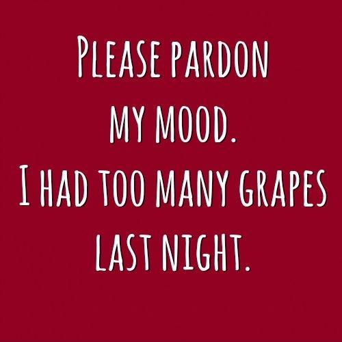 Please pardon my mood. I had too many grapes last night Picture Quote #1