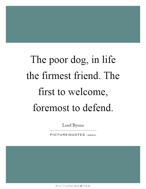 Welcome To New Life Quotes: The Poor Dog, In Life The Firmest Friend. The First To