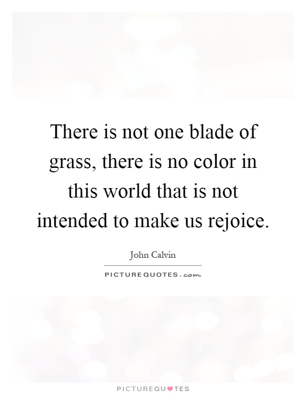There is not one blade of grass, there is no color in this world that is not intended to make us rejoice Picture Quote #1