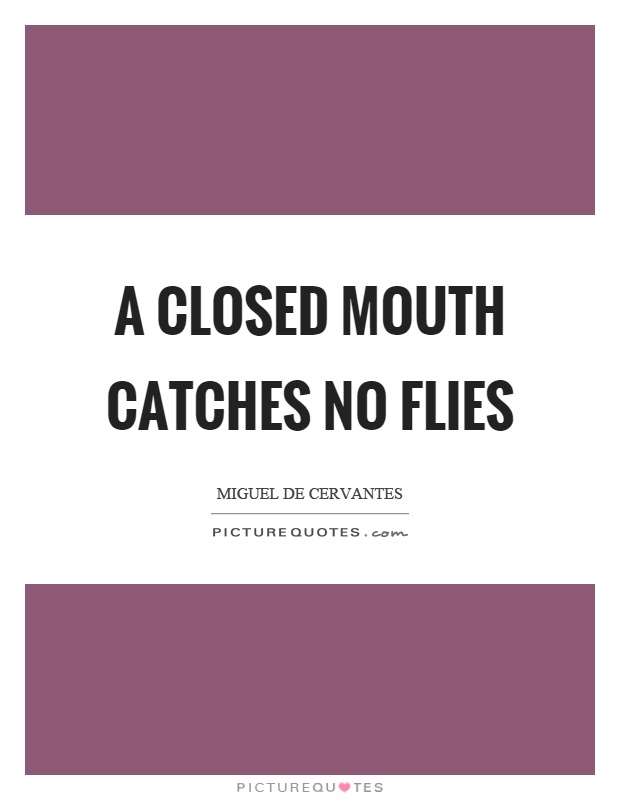 A closed mouth catches no flies Picture Quote #1