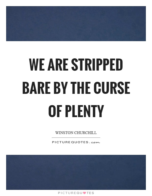 We are stripped bare by the curse of plenty Picture Quote #1