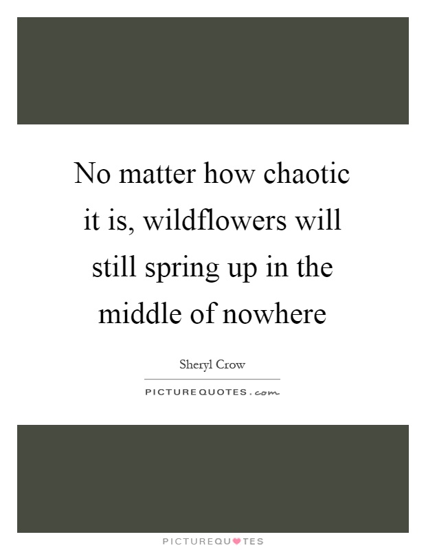 No matter how chaotic it is, wildflowers will still spring up in the middle of nowhere Picture Quote #1