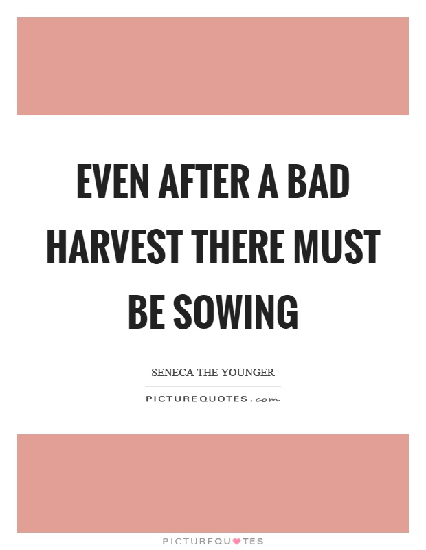 Even after a bad harvest there must be sowing Picture Quote #1