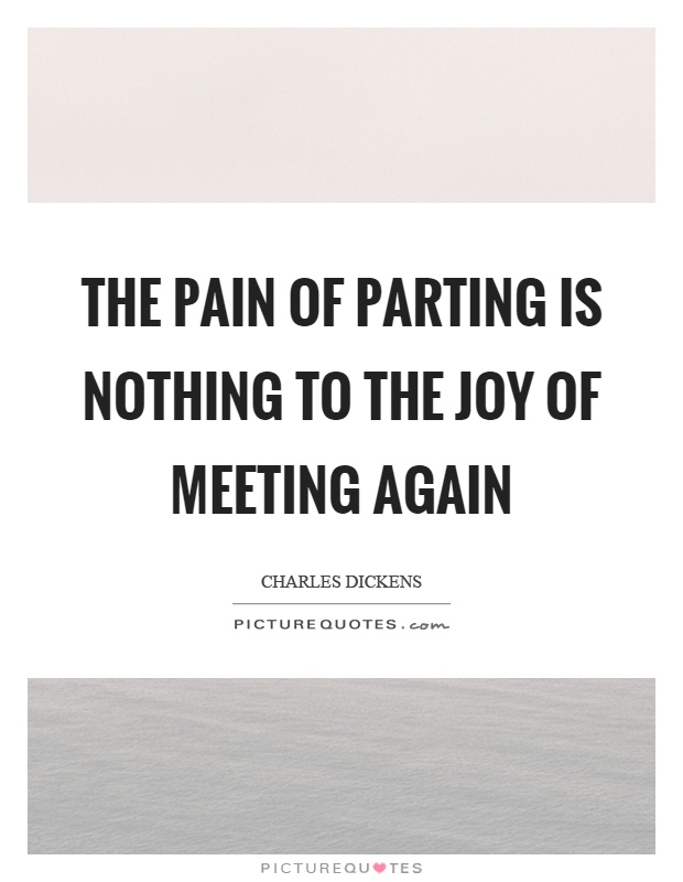 The pain of parting is nothing to the joy of meeting again Picture Quote #1