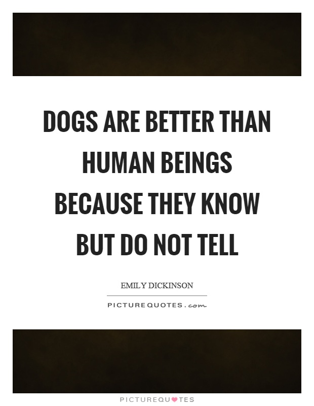 Dogs are better than human beings because they know but do not tell Picture Quote #1