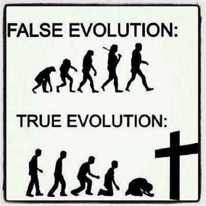 False evolution. True evolution Picture Quote #1