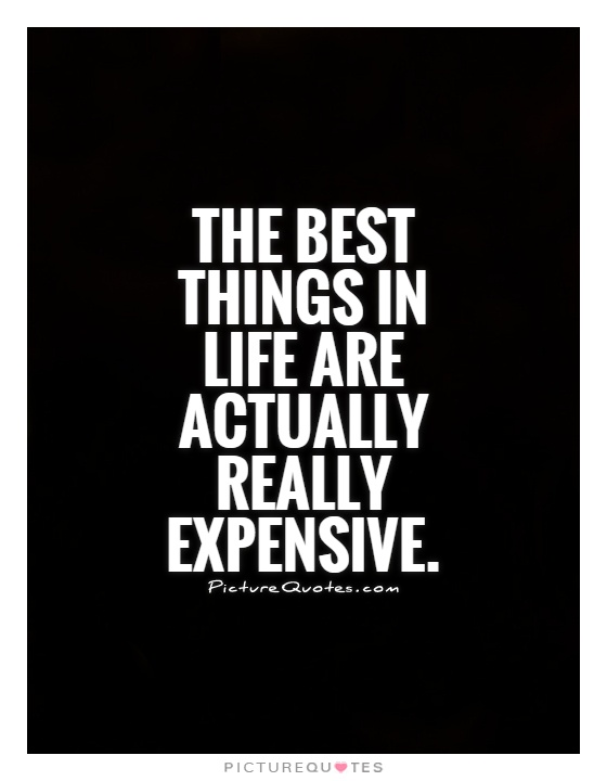The best things in life are actually really expensive Picture Quote #1