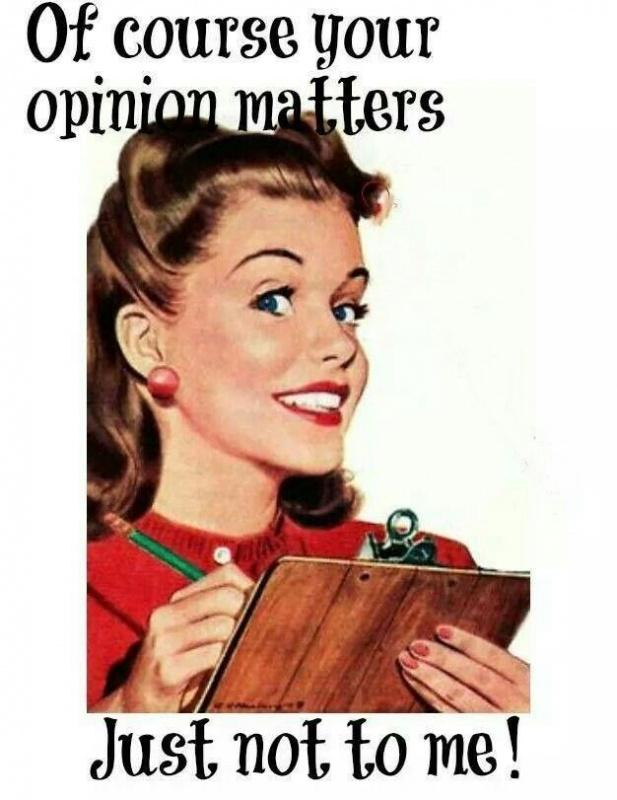 Of course your opinion matters, just not to me! Picture Quote #1