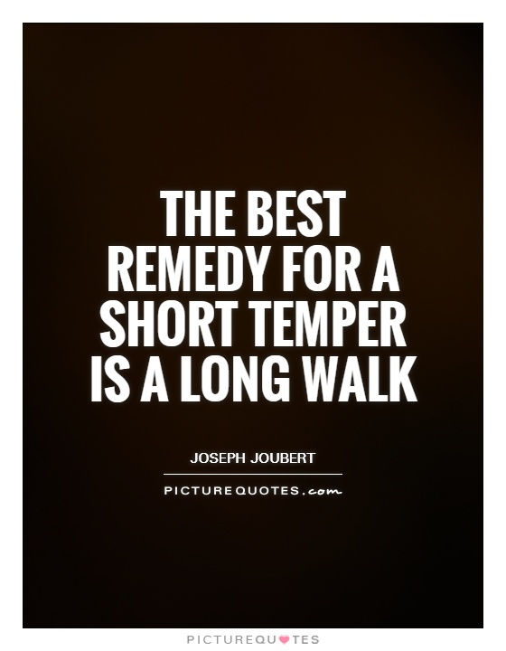 The best remedy for a short temper is a long walk Picture Quote #1