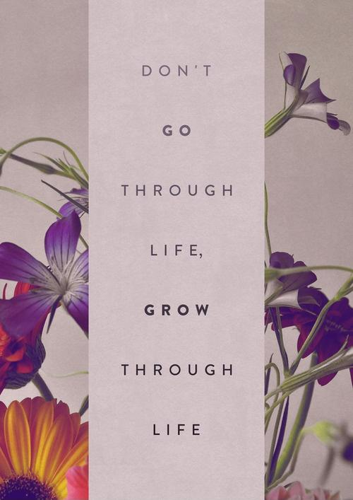 Do go through life, grow through life Picture Quote #1
