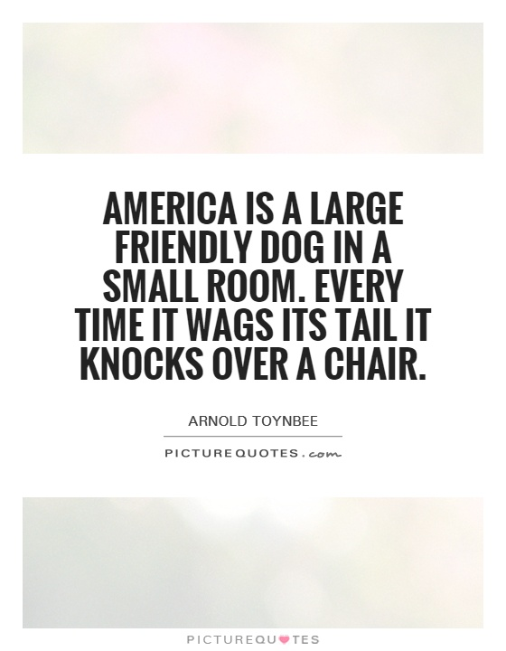 America is a large friendly dog in a small room. Every time it wags its tail it knocks over a chair Picture Quote #1