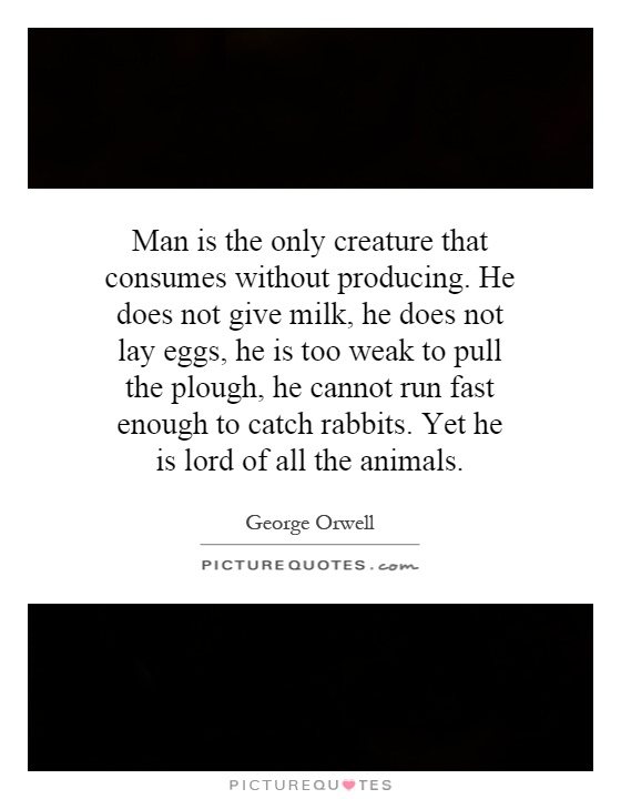 Man is the only creature that consumes without producing. He does not give milk, he does not lay eggs, he is too weak to pull the plough, he cannot run fast enough to catch rabbits. Yet he is lord of all the animals Picture Quote #1