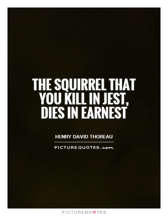 The squirrel that you kill in jest, dies in earnest Picture Quote #1