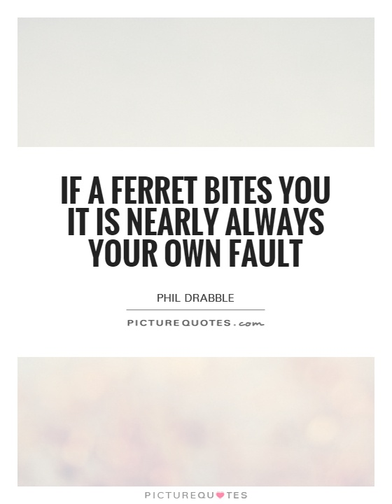 If a ferret bites you it is nearly always your own fault Picture Quote #1