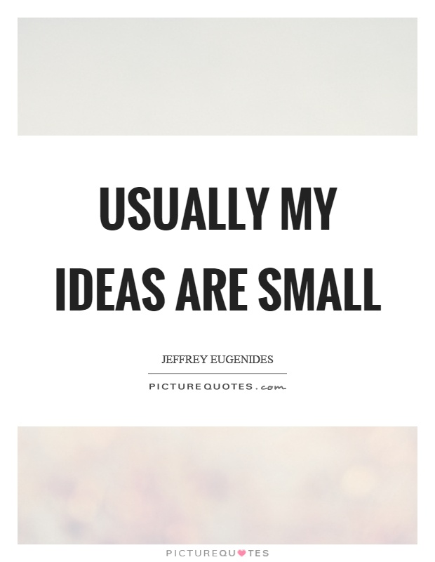 Usually my ideas are small Picture Quote #1