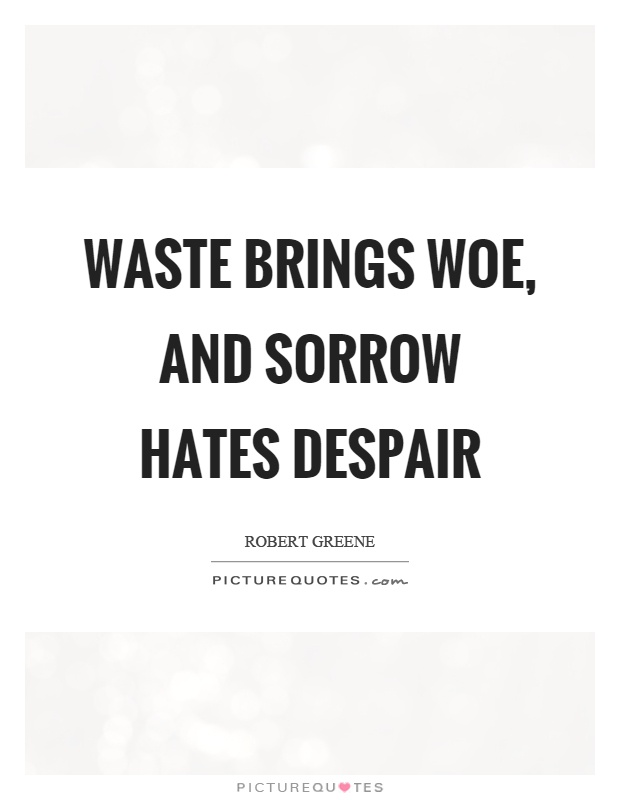 Waste brings woe, and sorrow hates despair Picture Quote #1