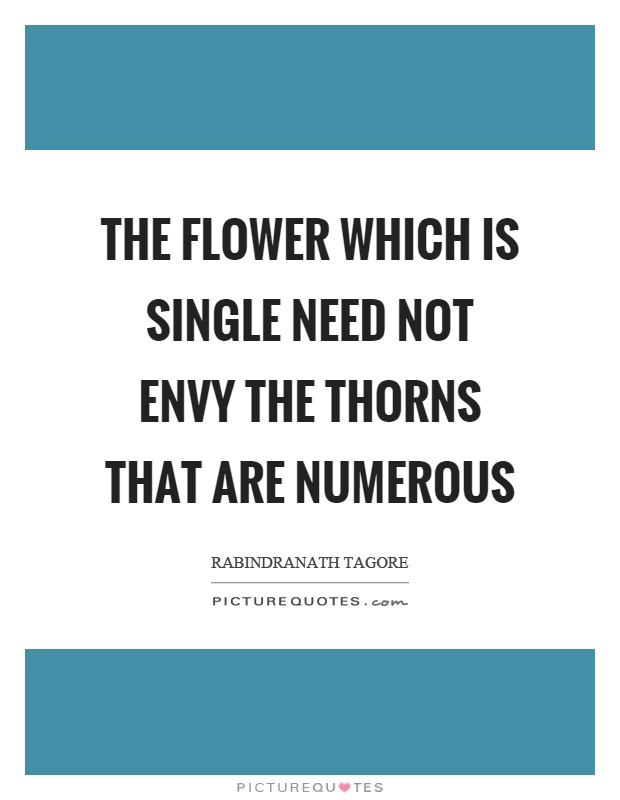The flower which is single need not envy the thorns that are numerous Picture Quote #1
