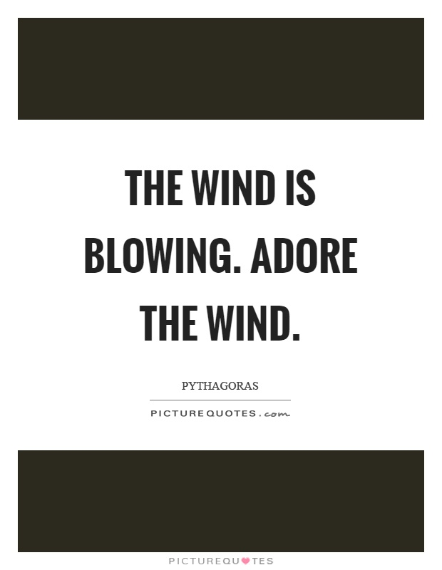 The wind is blowing. Adore the wind Picture Quote #1