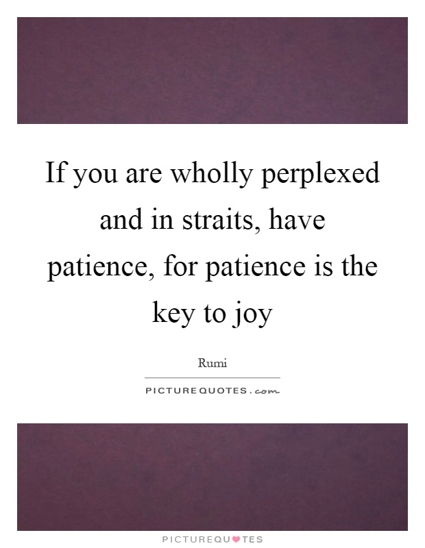 If you are wholly perplexed and in straits, have patience, for patience is the key to joy Picture Quote #1
