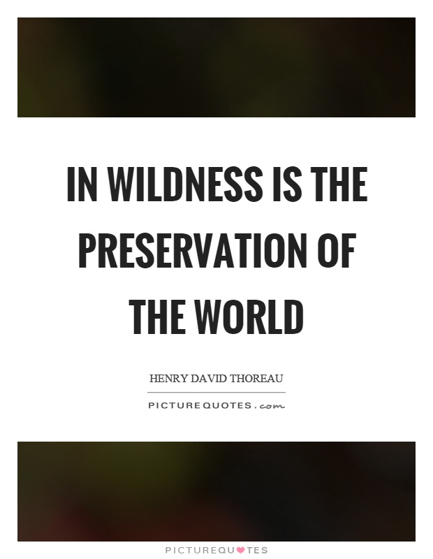 In wildness is the preservation of the world Picture Quote #1