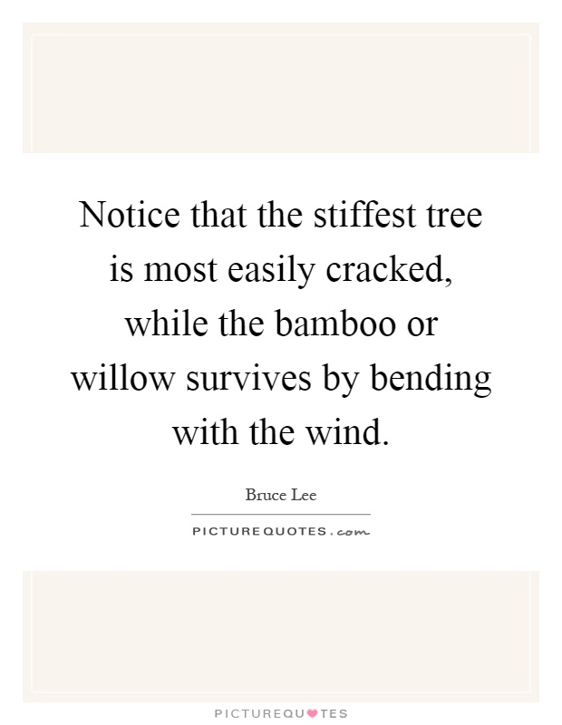 Notice that the stiffest tree is most easily cracked, while the bamboo or willow survives by bending with the wind Picture Quote #1