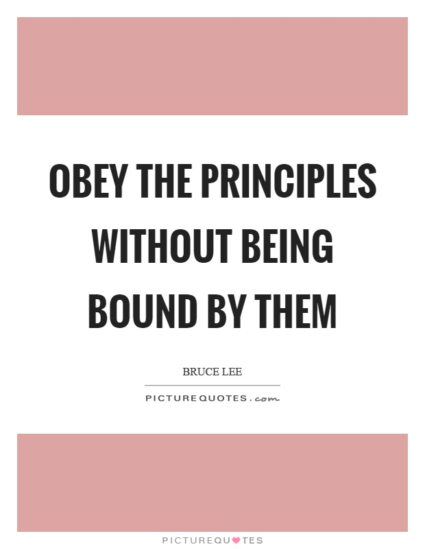 Obey the principles without being bound by them Picture Quote #1
