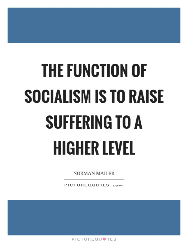 The function of socialism is to raise suffering to a higher level Picture Quote #1