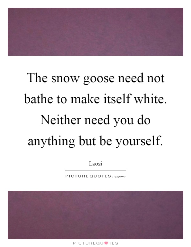 The snow goose need not bathe to make itself white. Neither need you do anything but be yourself Picture Quote #1