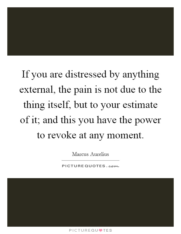 If you are distressed by anything external, the pain is not due to the thing itself, but to your estimate of it; and this you have the power to revoke at any moment Picture Quote #1