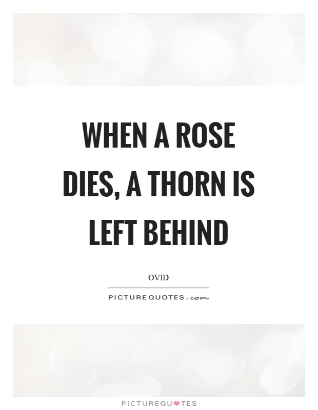 When a rose dies, a thorn is left behind Picture Quote #1