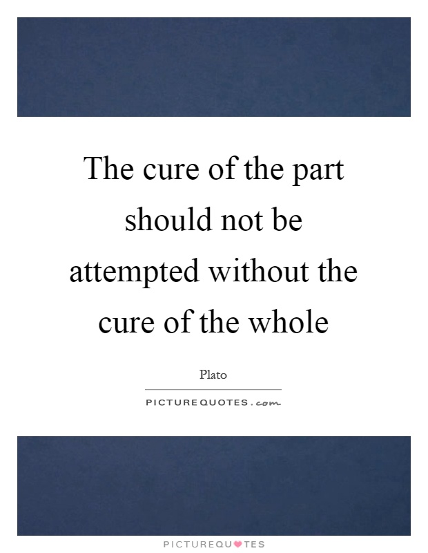 The cure of the part should not be attempted without the cure of the whole Picture Quote #1