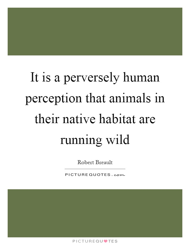 It is a perversely human perception that animals in their native habitat are running wild Picture Quote #1