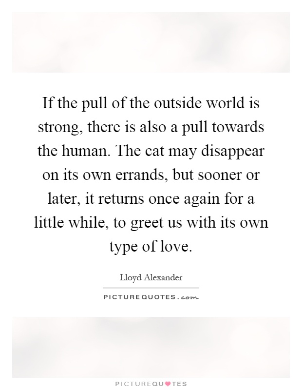 If the pull of the outside world is strong, there is also a pull towards the human. The cat may disappear on its own errands, but sooner or later, it returns once again for a little while, to greet us with its own type of love Picture Quote #1