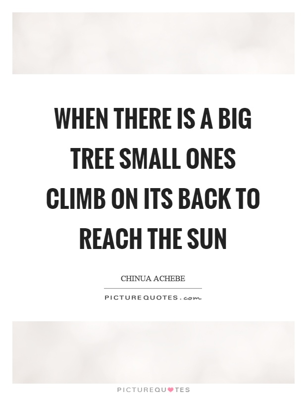 When there is a big tree small ones climb on its back to reach the sun Picture Quote #1